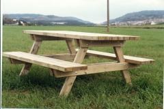 Taula picnic